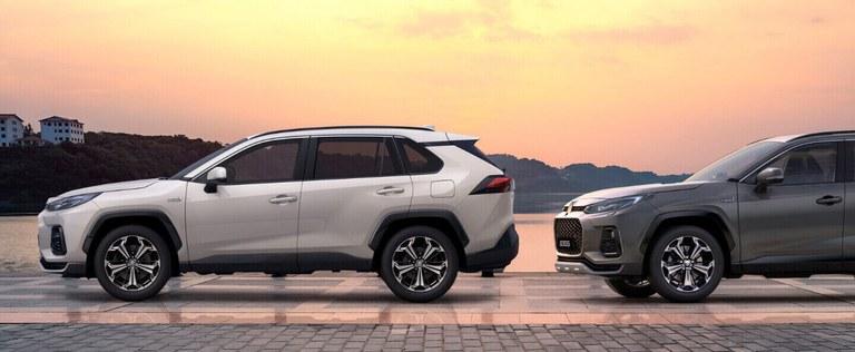 Suzuki Einparkhilfe vorn und hinten